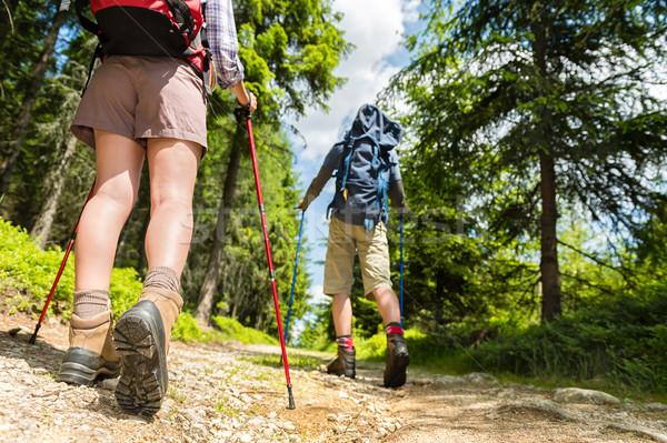 ハイカー 徒歩 トレッキング 小さな 少女 自然 ストックフォト © CandyboxPhoto