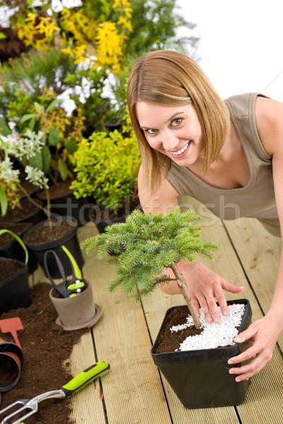 садоводства женщину бонсай дерево растений Сток-фото © CandyboxPhoto
