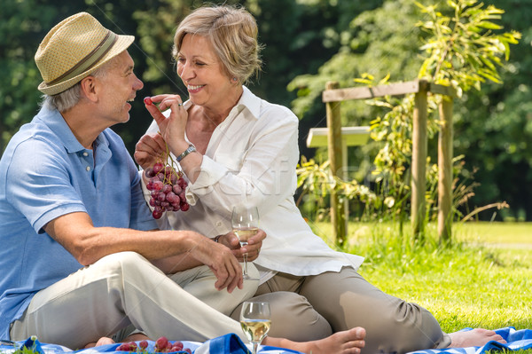 Stock photo: Smiling pensioner couple picnicking summer