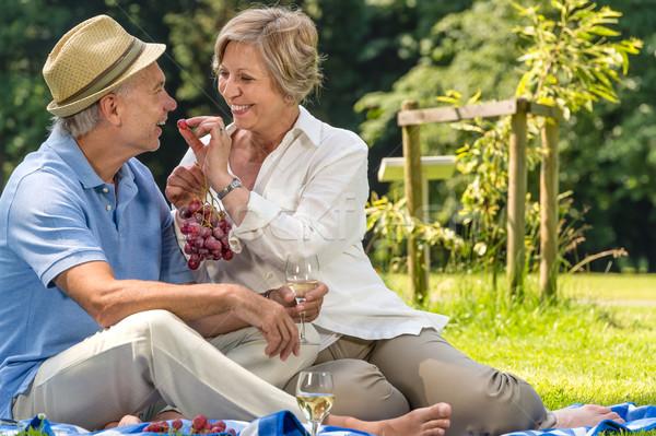 Gülen emekli çift yaz park Stok fotoğraf © CandyboxPhoto