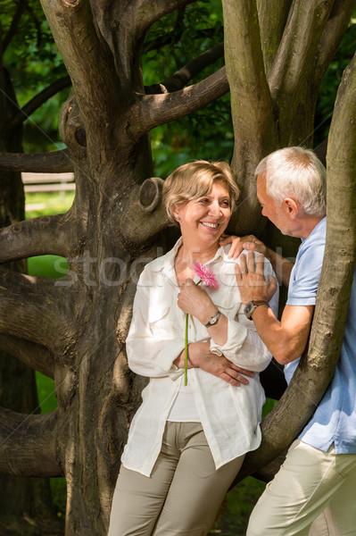 Romantik kalma park açık havada ağaç Stok fotoğraf © CandyboxPhoto