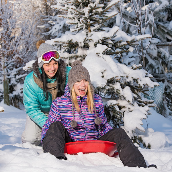 Two female friends on bobsleigh winter snow Stock photo © CandyboxPhoto