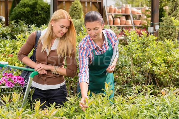 Giardino centro lavoratore dare consiglio cliente Foto d'archivio © CandyboxPhoto