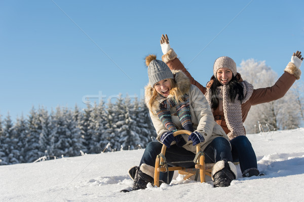Two girlfriends sledge downhill in wintertime Stock photo © CandyboxPhoto