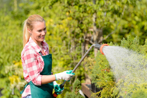Garden center woman watering plants with hose Stock photo © CandyboxPhoto