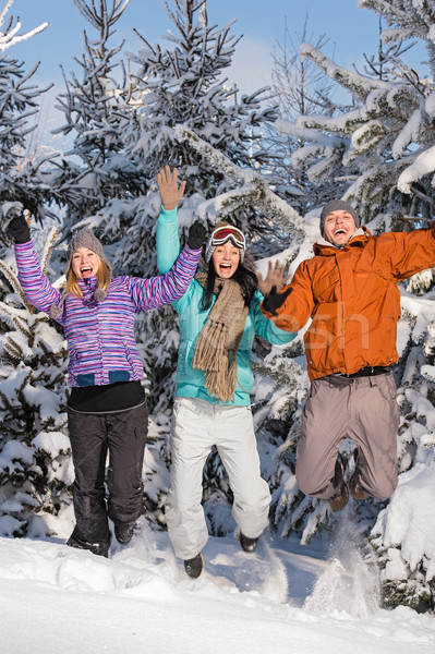 Group of teenagers jumping together in wintertime  Stock photo © CandyboxPhoto