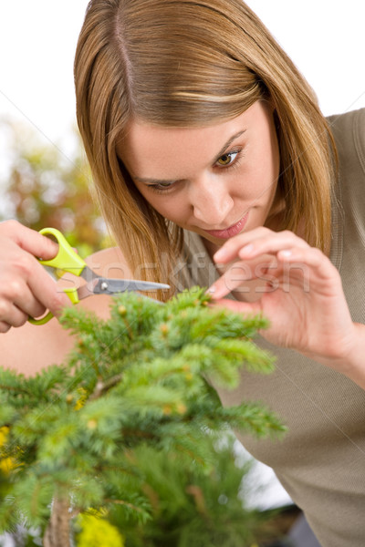 Gardening - woman trimming spruce tree Stock photo © CandyboxPhoto