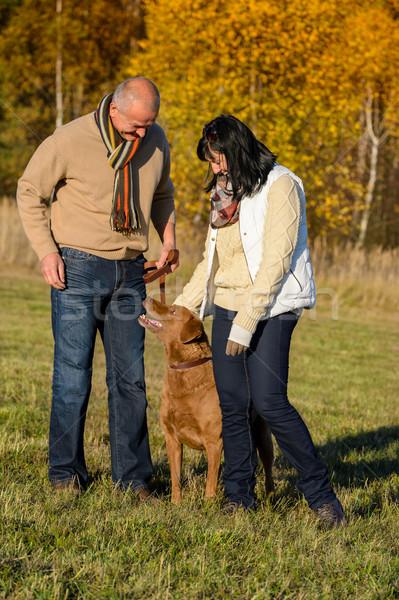Couple training dog in sunny autumn park Stock photo © CandyboxPhoto