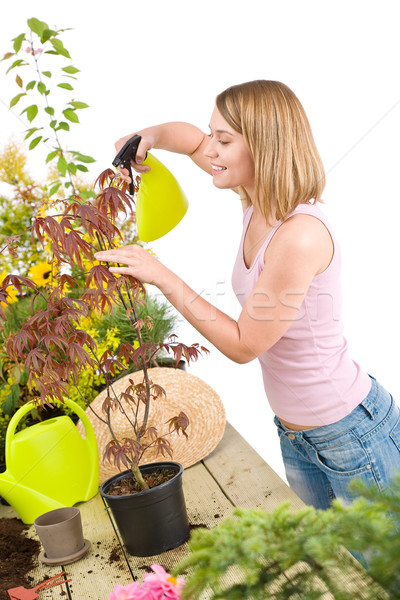 Stock photo: Gardening - woman sprinkling water to plant