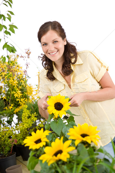 Gardening - woman with sunflower and pruning shears Stock photo © CandyboxPhoto