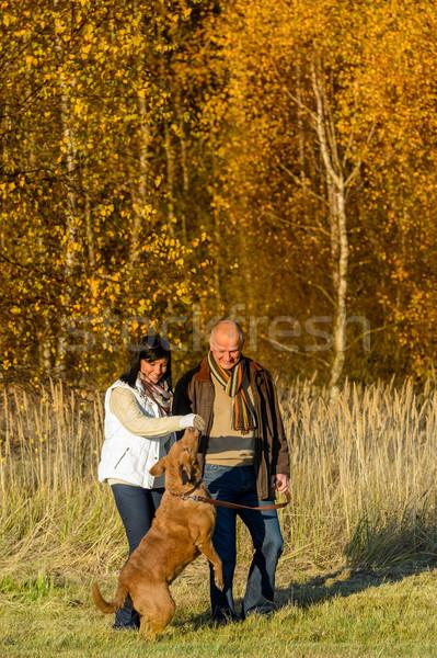Couple playing with dog autumn sunset park Stock photo © CandyboxPhoto