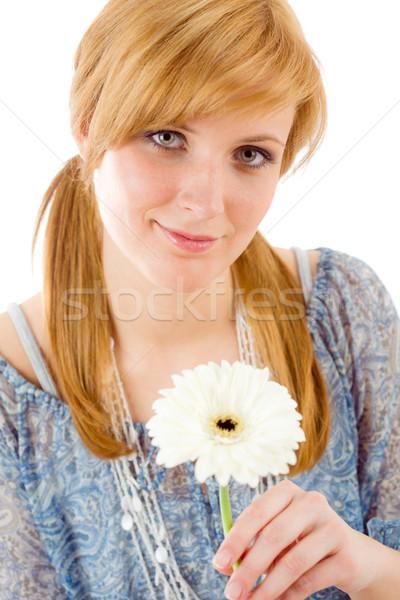 Foto stock: Romántica · mantener · Daisy · flor · blanco