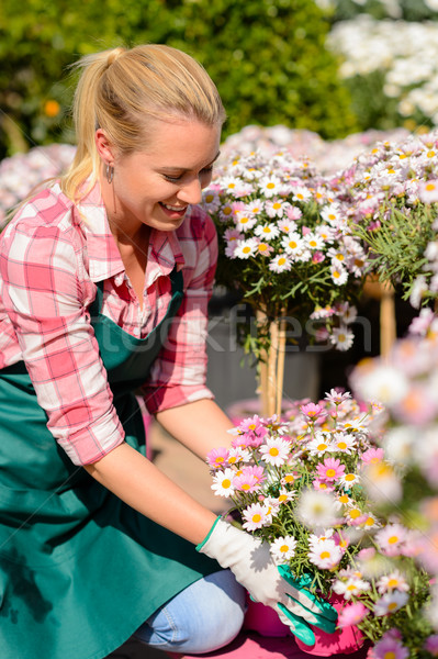 Garden center woman looking down potted flowers Stock photo © CandyboxPhoto