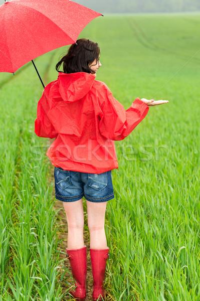 Mulher em pé capa de chuva guarda-chuva campo primavera Foto stock © CandyboxPhoto