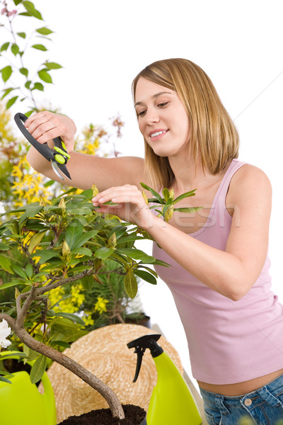 Gardening - Happy woman cutting Rhododendron flower Stock photo © CandyboxPhoto