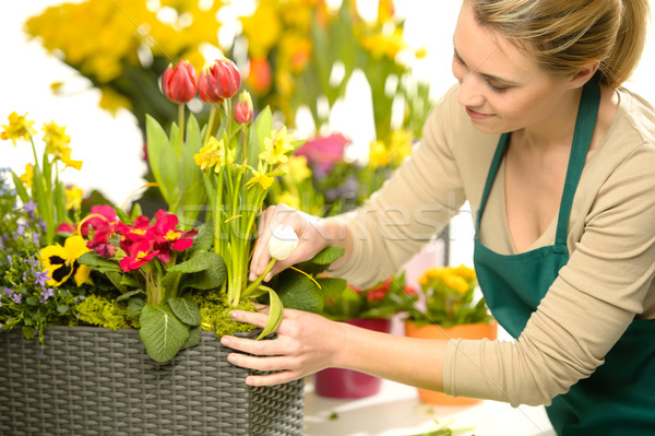 Florist arrange spring flowers colorful Stock photo © CandyboxPhoto