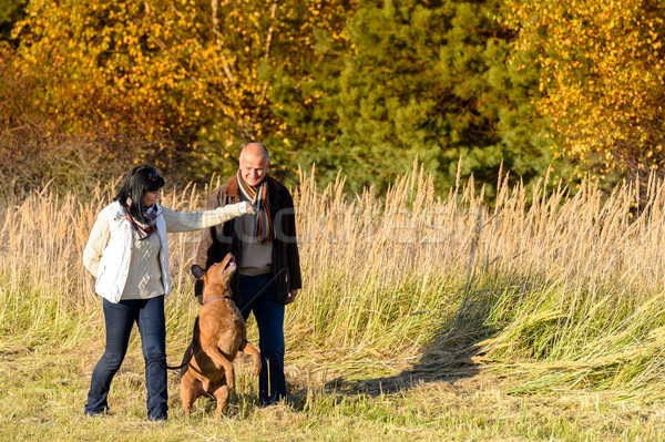 Couple playing with dog autumn sunny countryside Stock photo © CandyboxPhoto