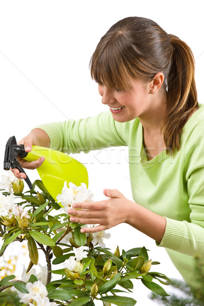 Gardening - woman sprinkling water on blossom flower Stock photo © CandyboxPhoto