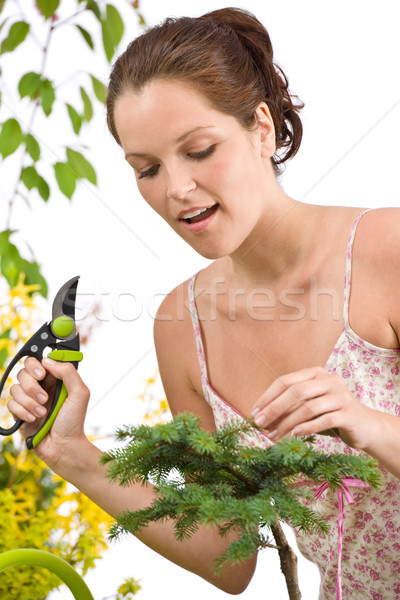 Gardening - woman cutting tree with pruning shears Stock photo © CandyboxPhoto