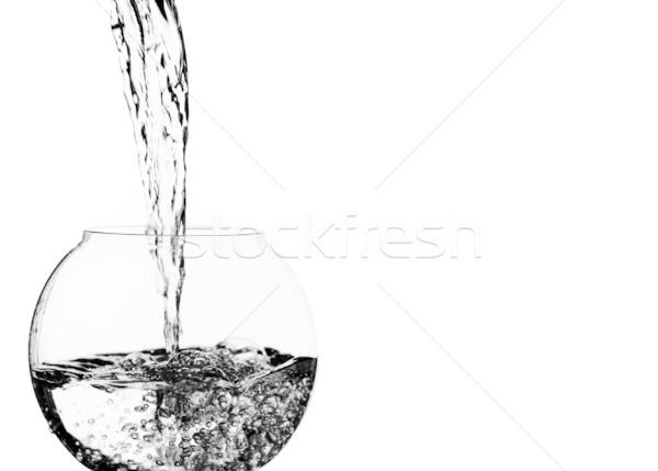 Su çanak serin temiz su güzellik Stok fotoğraf © cardmaverick2