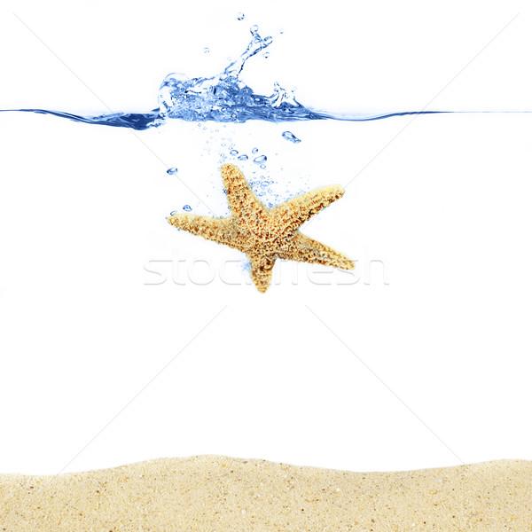 Starfish splash Ocean sopra sabbia Foto d'archivio © cardmaverick2