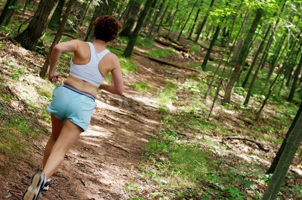 Starsza kobieta runner uruchomiony lasu kobieta wiosną Zdjęcia stock © cardmaverick2
