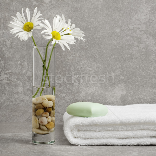 Spa Display grau Stein Blume Haus Stock foto © cardmaverick2