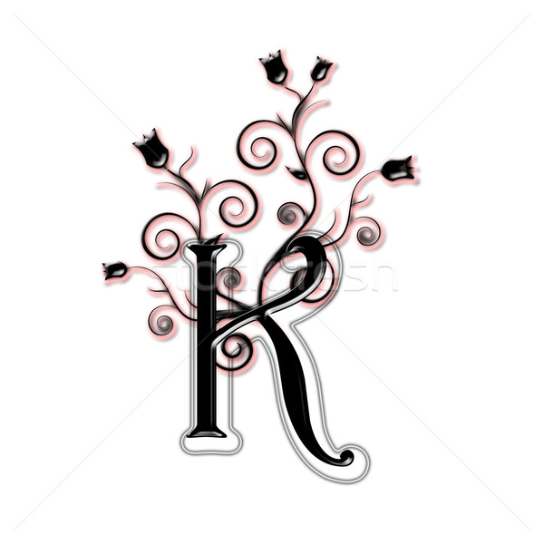 Hoofdletter zwarte bloemen bladeren type brief Stockfoto © carenas1