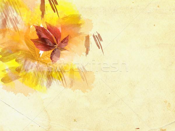 Leaves on grunge background Stock photo © carenas1