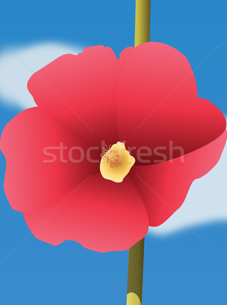 Red flower on blue background Stock photo © carenas1