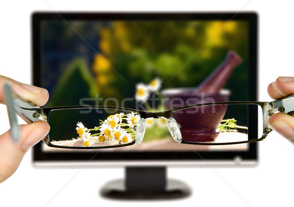 Man is viewing to flowers on display Stock photo © carenas1