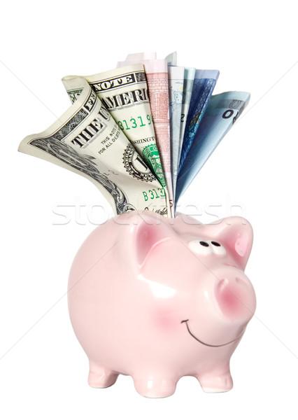 Foto d'archivio: Suino · sorridere · piedi · soldi · finanziare