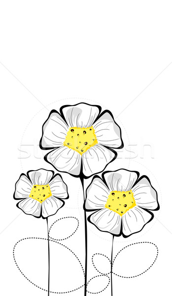Three isolated colorful white flowers Stock photo © carenas1