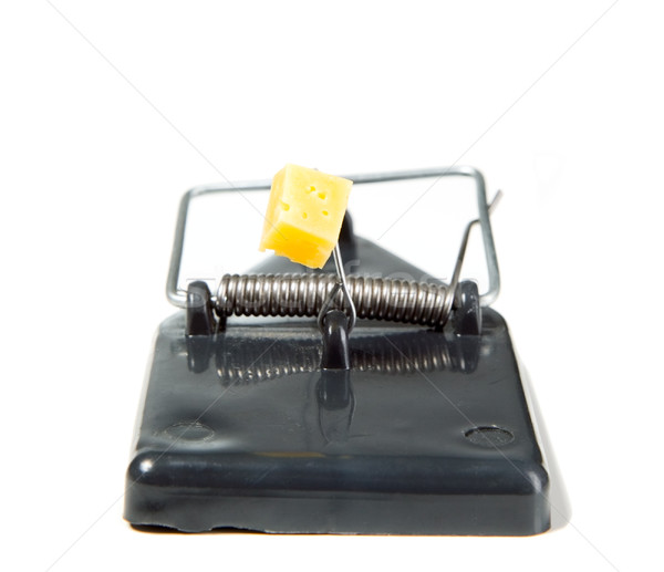 A mouse trap with cheese Stock photo © carenas1
