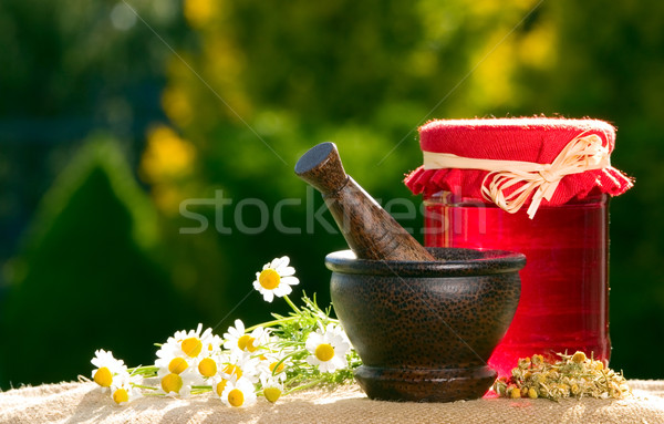 Jam and wooden pestle with chamomiles Stock photo © carenas1