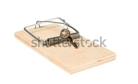 Maus Trap golden Ring Holz Tod Stock foto © carenas1