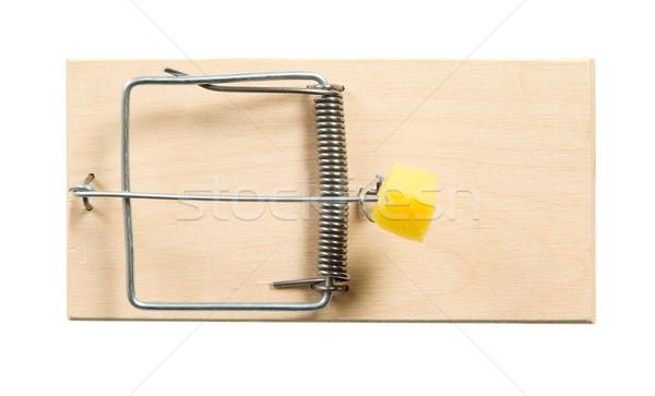 Mouse trappola formaggio legno morte ratto Foto d'archivio © carenas1