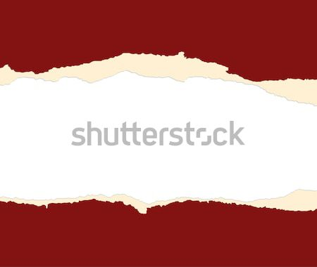 A red sheet of paper is teared in two Stock photo © carenas1