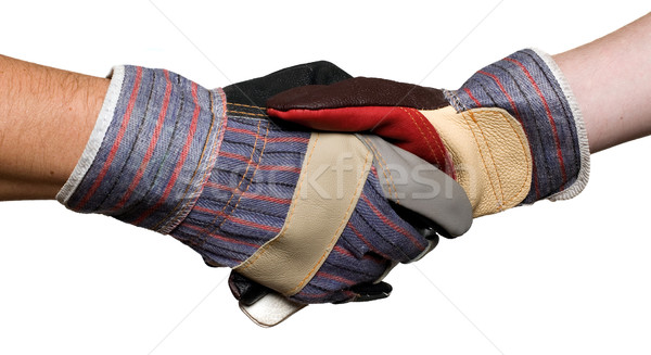 Constructors with gloves, white background, shaking hands Stock photo © carenas1