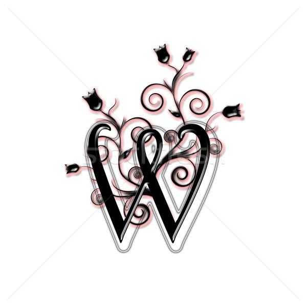 Capital letter W Stock photo © carenas1
