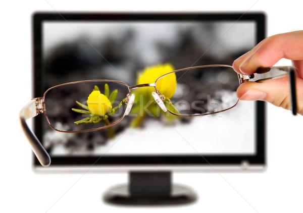 Man gele bloem display bril natuur ontwerp Stockfoto © carenas1