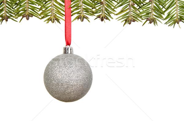 şube Noel süslemeleri kutlama kart Stok fotoğraf © carenas1