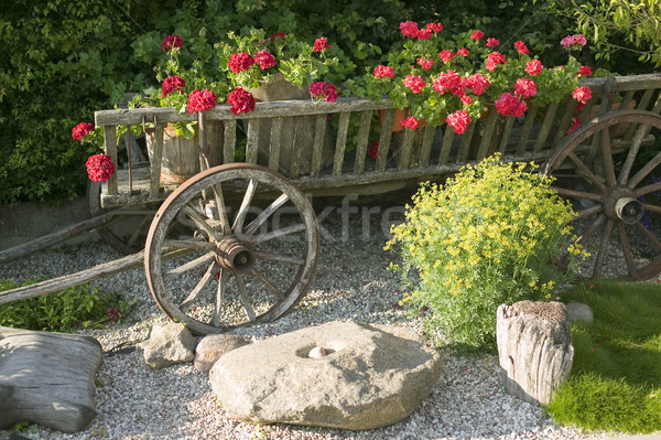 Old wooden wagon filled with flowers Stock photo © carenas1