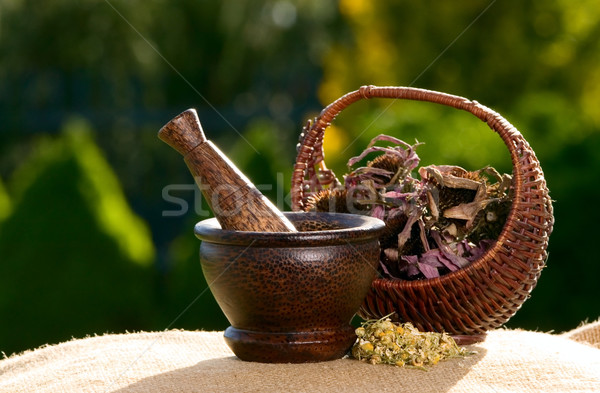 Wooden pestle with dried flowers Stock photo © carenas1