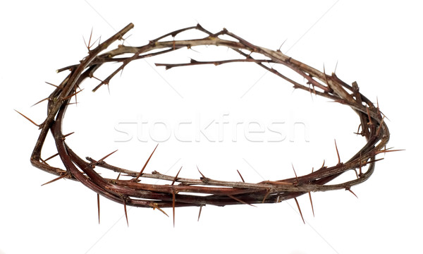 Crown of wood with thorns Stock photo © carenas1