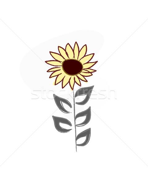 Foto stock: Belo · mão · desenhar · flor · surpreendente · flores