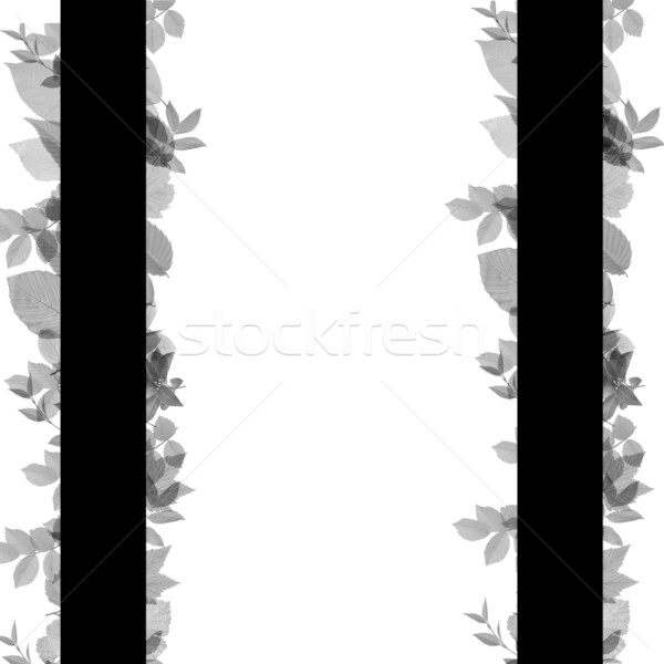 Abstract frame gefeliciteerd kaarten contrast idee Stockfoto © carenas1
