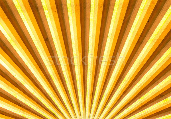 Vintage multicolor sunbeam Stock photo © carenas1