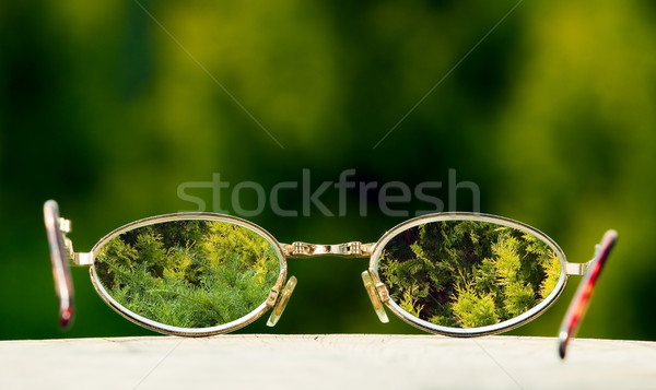 Eyeglasses on green nature background Stock photo © carenas1