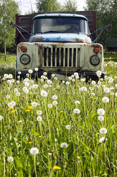 Stock photo: Old truck in nature concept